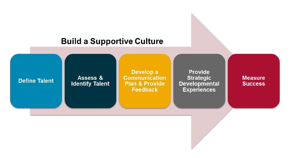Build a Supportive Culture